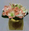 Συνθέσεις Λουλουδιών με Αμαρυλλίδες