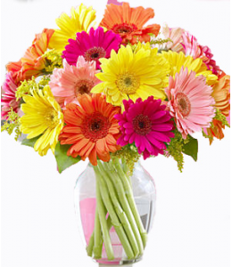Arrangement with Gerberas