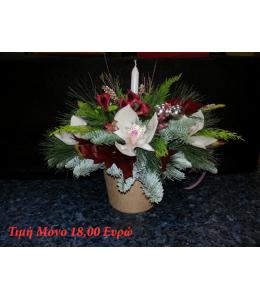 Sampson Flowers Christmas 2