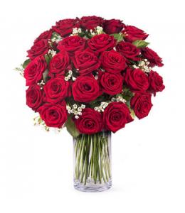 Κόκκινα τριαντάφυλλα για ερωτευμένους