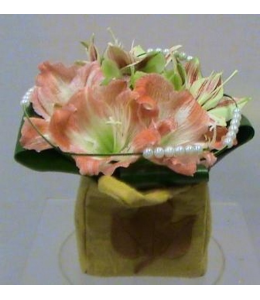 Flower Arrangements with Amaryllis