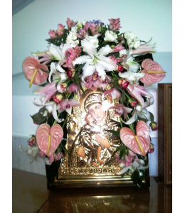 Decorations of Pictures with orchid pink