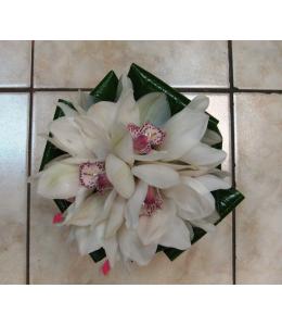 Bridal Bouquet Orchid sympitioum