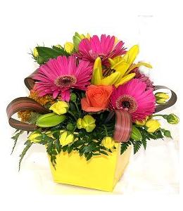Ανθοπωλεία sampson-flowers
