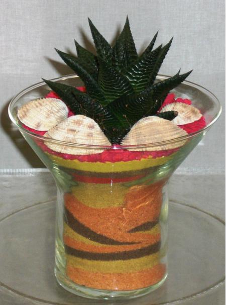 Φυτό Αλόη